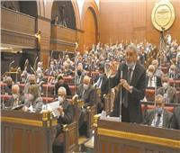 نائب بالشيوخ: 100 مليون مصري خلف الرئيس للحفاظ علي حقوق مصر