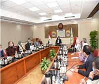 لجنة لترويج المشروعات الاستثمارية بمطروح