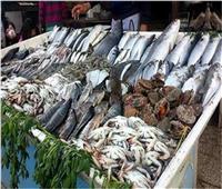 أسعار الأسماك في سوق العبور اليوم.. والجمبري المجمد بـ 85 جنيهًا