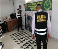 مصادرة آلاف الأسلحة النارية وضبط عصابات التهريب بأمريكا الجنوبية