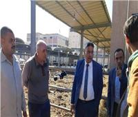زراعة المنوفية: استخراج 103 ترخيص تشغيل لمزارع ماشية