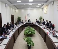 التعليم العالي: اعادة هيكلة مجلس «المصرية للتعلم الإلكترونى الأهلية»