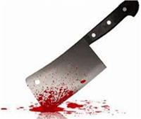 النيابة تأمر بحبس متهم بقتل سيدة وابنها بالساطور في «بني مزار»