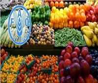 أسباب ارتفاع أسعار السلع الغذائية لشهر مارس بمؤشر منظمة الأغذية والزراعة