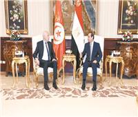مصر وتونس.. علاقات راسخة ومصير مشترك