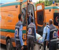 إصابة 5 أشخاص  إثر انقلاب سيارة ربع نقل تابعة لوزارة الزراعة بالمنيا