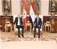 فيديو| السيسي يستقبل الرئيس التونسي بقصر الاتحادية