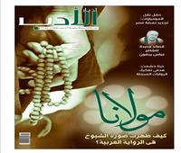 صورة مولانا في الرواية المصرية المعاصرة.. اليوم في أخبار الأدب