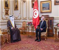 قيس سعيد يستقبل رئيس البرلمان العربي بقصر القبة في القاهرة | صور