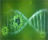 استشاري: المواد الحافظة تقلل من تحفيز المناعة