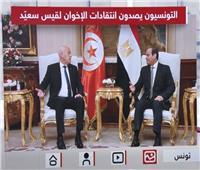 مصريون وتونسيون يصدون هجوم الإخوان على الرئيس التونسيقيس سعيد