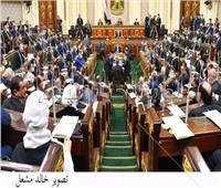 وكيل «اقتصادية النواب» ينتقد زميله فخري الفقي: «بيجامل الحكومة»
