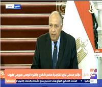 وزير الخارجية: مصر تألمت لمعاناة الشعب السوري