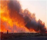 السيطرة على حريق بالغابة الشجرية بـ«الغردقة»