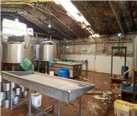 «الحشرات الزاحفة» تغلق مصنع ألبان ومخزنين بالشرقية