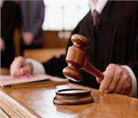 الخميس.. أولى جلسات محاكمة لصوص حقائب سيدة مدينة نصر