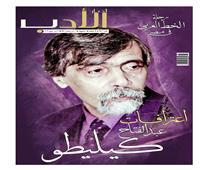 رحلة الخط العربي في مصر بعدد أخبار الأدب الجديد