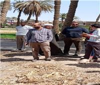 محافظ أسيوط يعلن تسليم 7 مواقع لإنشاء محطات صرف صحي