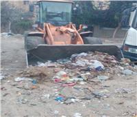 رفع وإزالة 1950 طن قمامة ومخلفات من أحياء «الإسماعيلية»