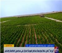 نصائح لحماية المحاصيل من درجة الحرارة المرتفعة| فيديو