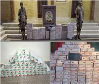 «حرس الحدود» تضبط كميات كبيرة من الأسلحة والمخدرات وتدمر 5 أنفاق | صور وفيديو