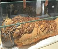 «ممنوع التصوير» أبرز ضوابط قاعة المومياوات الملكية في متحف الحضارة