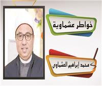 د. محمد إبراهيم العشماوى يكتب: تذكير السادة بلفظ السيادة