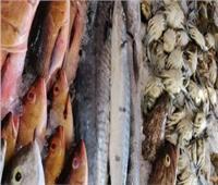 أسعار الأسماك في سوق العبور بسابع أيام شهر رمضان