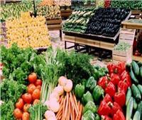 السفير الروسي يشيد بجودة المنتجات الزراعية المصرية.. «تشهد إقبالا كبيراً»