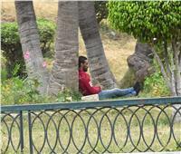 الهروب إلى الظل.. أعنف موجة حارة في الإسكندرية | صور