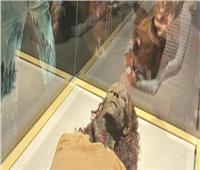سياح عن المومياوات الملكية: رائع أن تشاهد حكام مصر القديمة في مكان واحد
