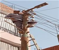 صيانة الكهرباء وأعمدة الإنارة بقرى الباجور | صور