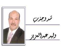 وليد عبدالعزيز يكتب: الاختيار.. مش محتاج تفكير