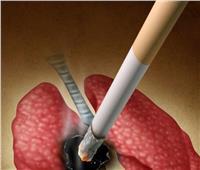 «حسام موافي» يكشف عن علاقة السرطان بالتدخين.. فيديو