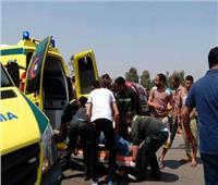 مصرع شخصين في حادث تصادم بالطريق الزراعي بالبحيرة