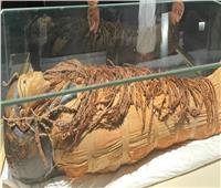 إقبال كبير على قاعة «المومياوات الملكية» في المتحف القومي للحضارة.. فيديو