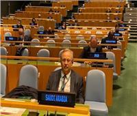 السعودية تحصل على مقعد في لجنة الأمم المتحدة للمخدرات والجريمة