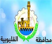 القليوبية في 24 ساعة | تطوير كورنيش النيل ببنها.. الأبرز