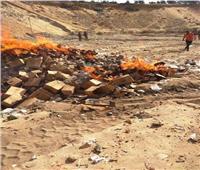 إعدام 45 طن أرز منتهي الصلاحية بالشرقية