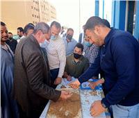 شون وصوامع المنيا تستقبل 7865 طن من الأقماح