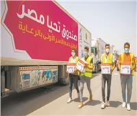 «تحيا مصر» يوزع 134 طنا من الأغذية والدواجن على 10 آلاف أسرة بالقليوبية