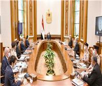 «الدلتا الجديدة».. تقرير شامل لـ«السيسي» عن استصلاح الأراضي بوسط وشمال سيناء