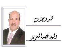 وليد عبدالعزيز يكتب: الهجمة المرتدة.. وكفاءة الصقور