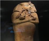 في عيده الـ 65.. تعرف علي مركز تسجيل الآثار المصرية