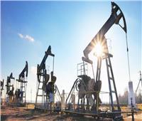 ارتفاع أسعار النفط رغم تفاقم وضع كورونا في الهند