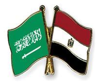 13% زيادة في الصادرات المصرية إلى السوق السعودي خلال عام 2020