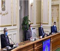 رئيس الوزراء: نعمل على توفير أكبر كمية من لقاحات كورونا