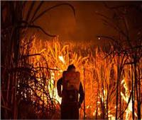 السيطرة على حريقين في 7 أفدنة قصب ووحدة سكنية بقنا
