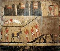 أسرار العمارة السكنية في العصور الحجرية الحديثة في مصر القديمة