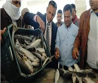 وزير الزراعة يعلن افتتاح موسم الصيد في بحيرة البردويل